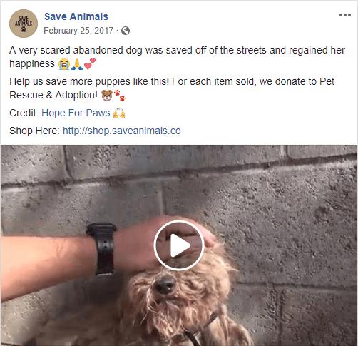 Save Animals Ad